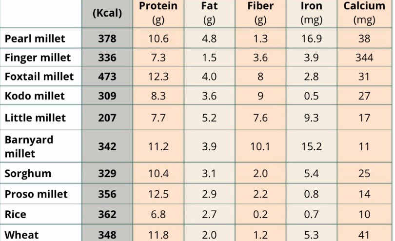 millets ntrition compared to rice and wheat :The following millets nutrition chart will give the nutritional values in grams compared to rice and wheat.
