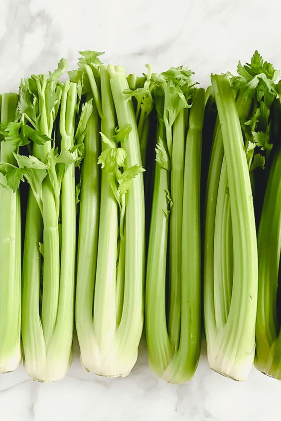 celery to reduce body heat in summers