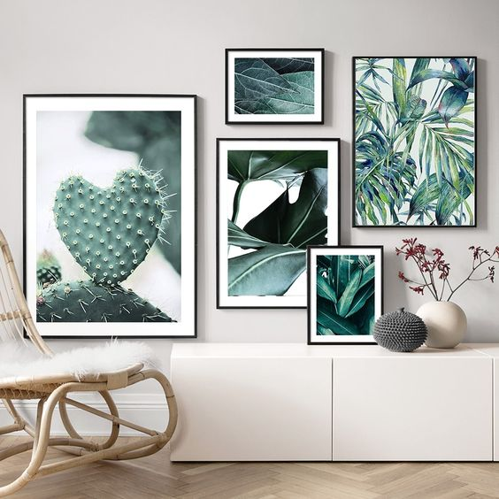 plant pictures and prints for plant lovers