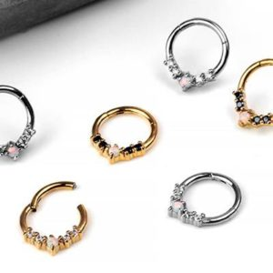 Types Of Nose Rings - septum clickers